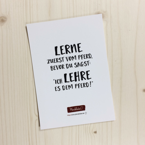 """Karte """"Lerne zuerst vom Pferd, ..."""""""