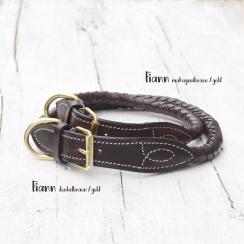 "Hundehalsband ""Fiann"""